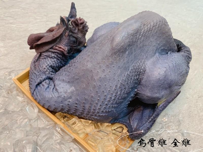 台東烏骨雞(公雞)